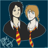 :: Padfoot and Moony by khaedin