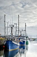 Bonavista Harbor Newfoundland by WitchDoctorTim