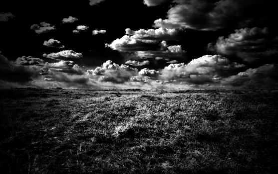 Winds Over the Prairie by 88neal88