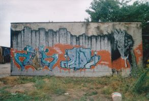 wall by okus581