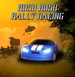 Rush Rush Rally Racing cover by ExRanza