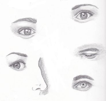 A Study of Eyes by vanessaaosorio