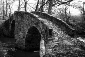 The Donkeys Bridge by OlivierAccart