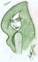 Shego - Rough by LordAkiyama