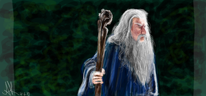 Gandalf by diabolic-sun