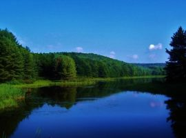 Reflection Pond By Dougpaughpoetry-d2vrbls by ShilohsArts