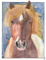 Horse 28 by Paintwick