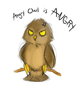 Angry owl is angry by CitrusVision