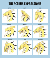 Thercerus Expressions by PidgeonToe