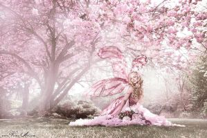 The Cherry Fairy by Jolien-Rosanne