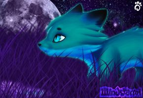 Color Experiment-Teal Fox by Windstorm1