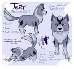 Teitr Reference sheet by EllenorMererid