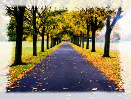 Fifty Shades of Autumn - Pathway to autumn by sexywitchnicki