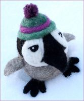 Baby Penguin by Minnu