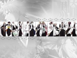 Bleach captains wallpapers by Hayka