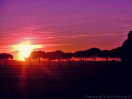 Sunset on Pisa by FrancescaDelfino
