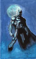 Batman 2012 after Jim Lee by myconius