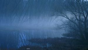 Swamp by s-ascic