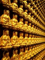 Golden Buddha perspective by sudro