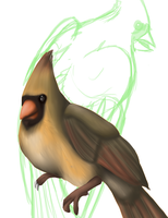 quick WIP cardinal by safirethedragon