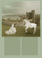 hp layout three by takeoffyourcolors
