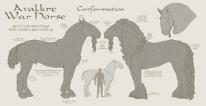 Avalkre War Horse Conformation by ReaWolf