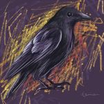 Crow - Painter by denn