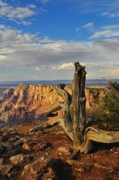 Grand Canyon 3 by Aklime88
