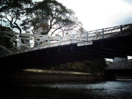 Cavenagh Bridge by remuru