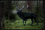 The Ravenstag by chaoticXinsane