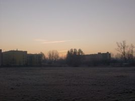 frosty morning 5 by indeed-stock