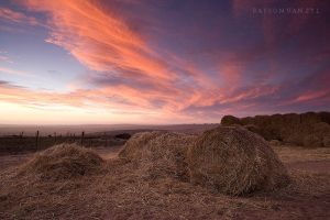 The Haystack by Bassonvz