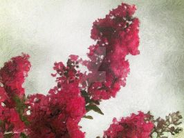 Red Crape Myrtle Impasto by ChristopherinMexico