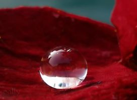 real red by palominodweezil