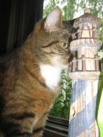 Cat and lighthouse by vonderwall
