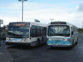 Old vs. New - Part 1: Buses by Hawker5ive