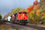 fall train in valpo 2 by wolvesone