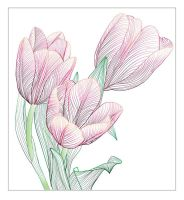 tulips by overcover