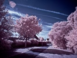 Infra Red Gate by Spunkii