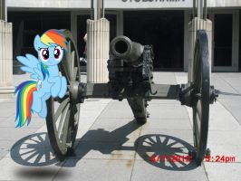 My Cannon! by TokkaZutara1164