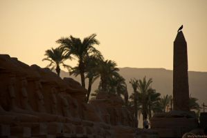 Karnak Temple by Piasecka