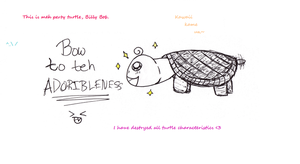 Meet Billy Bob The Turtle by Mellonychan