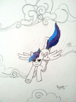Silverwing - A race between clouds by FenrirTheKnight