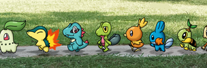Walk of starters2 by Kat-Skittychu