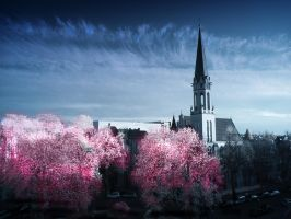 Spring Trees infrared by MichiLauke