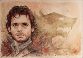 King in the North by SallyGipsyPunk