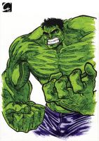 A Hulk for Richi by ElectroCereal