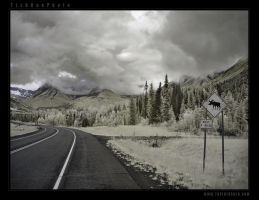 Four Miles by tisbone