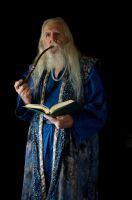 2014-08-01 Wizard Blue 07 by skydancer-stock