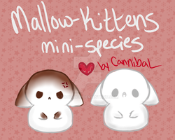 Mallow Kittens Mini Species Guide by CannibaI
